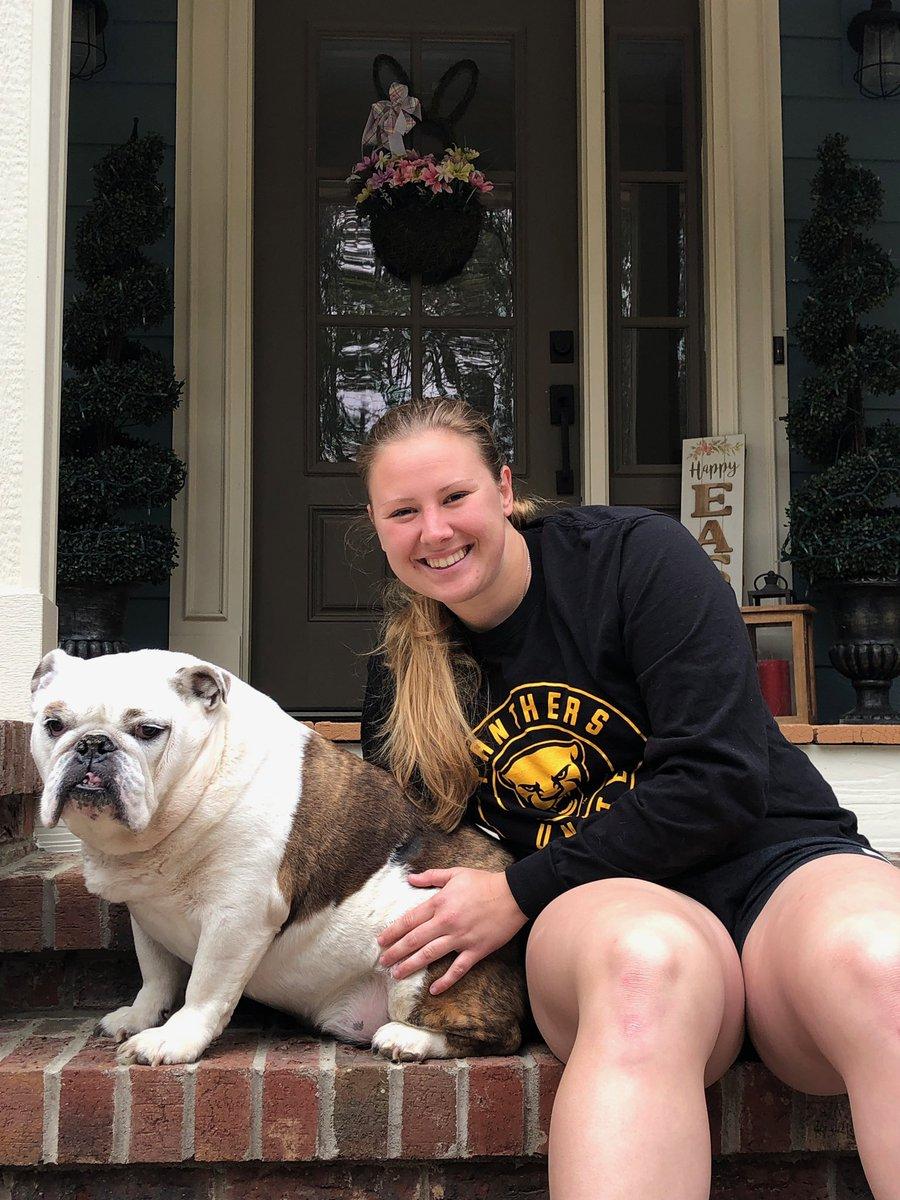 Everyone meet Georgia the bulldog!  We know senior @BarbeeWalker's dog is a Pitt fan 🐶💙  #H2P | #NationalPuppyDay