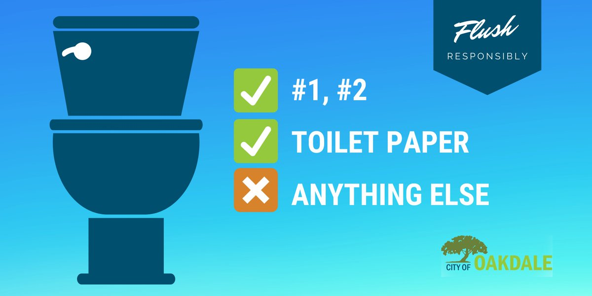 "We realize that many people are getting creative with their household supplies. However, please remember the only things that should be flushed are #1, #2 and toilet paper. NO EXCEPTIONS (even ""flushable"" wipes will clog pipes). Thanks for helping keep our sewer system happy!pic.twitter.com/YFpvhPlJ4u"