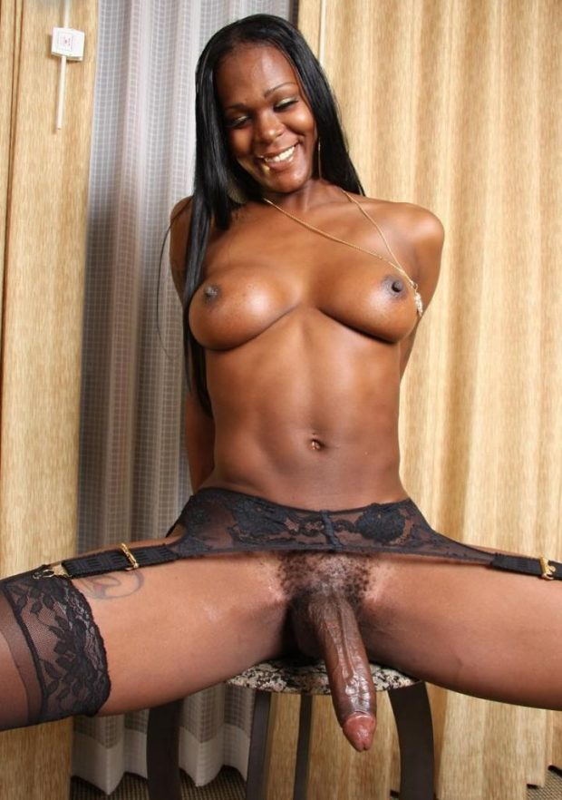 Skinny ebony shemale with a big dick