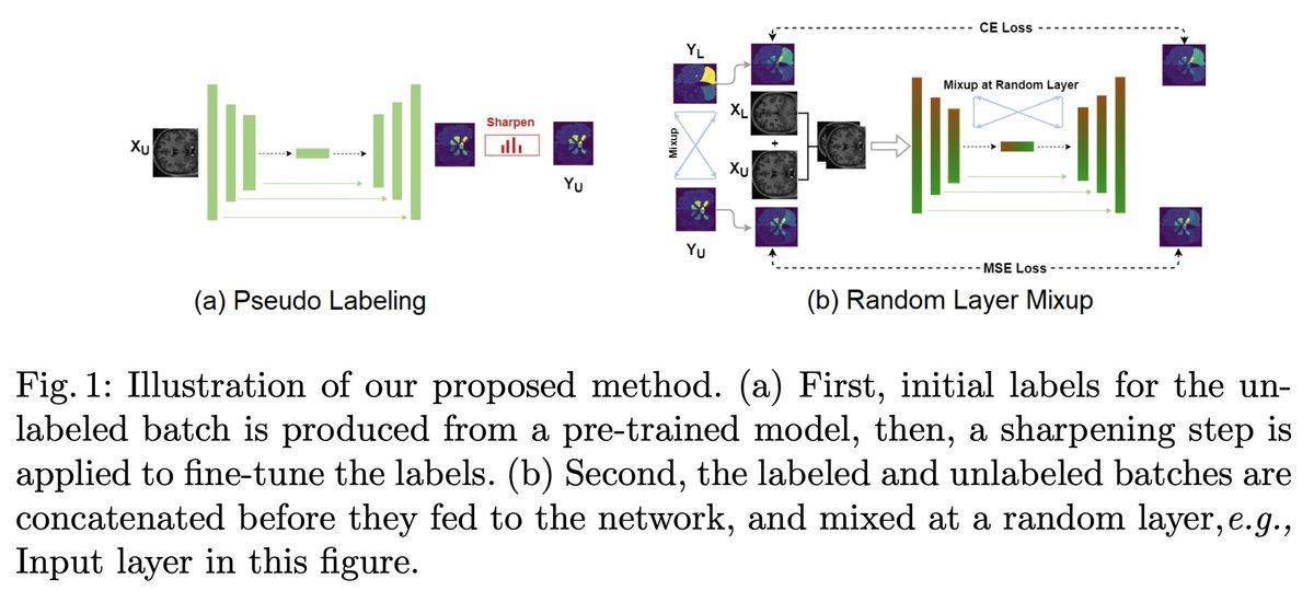 MixMatchのmixupをmanifold mixupにした感じ / ROAM: Random Layer Mixup for Semi-Supervised Learning in Medical Imaging