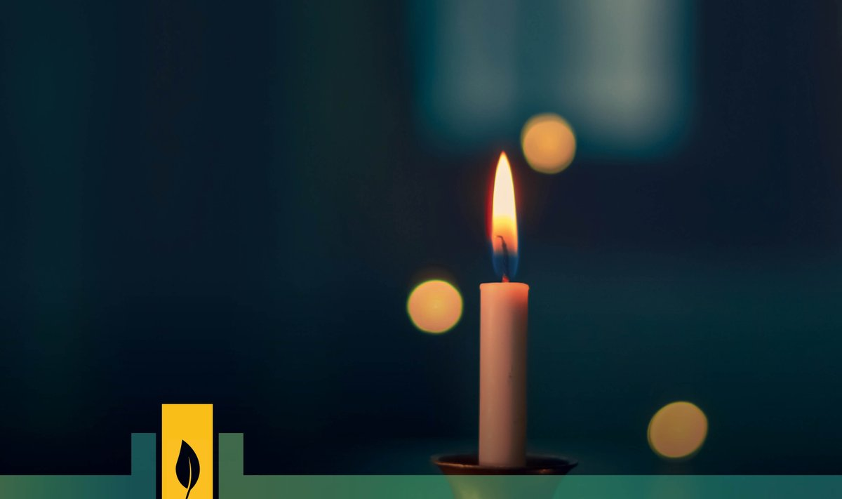 RT @CitiesWNature Even though we're helping to flatten the curve by staying home, we can still take part in #EarthHour!   Why not switch off & enjoy a candlelit dinner? #EarthHour2020   Explore all the different ways you can take part online or at home this @earthhour: https://t.co/R9MXmFWeWZ