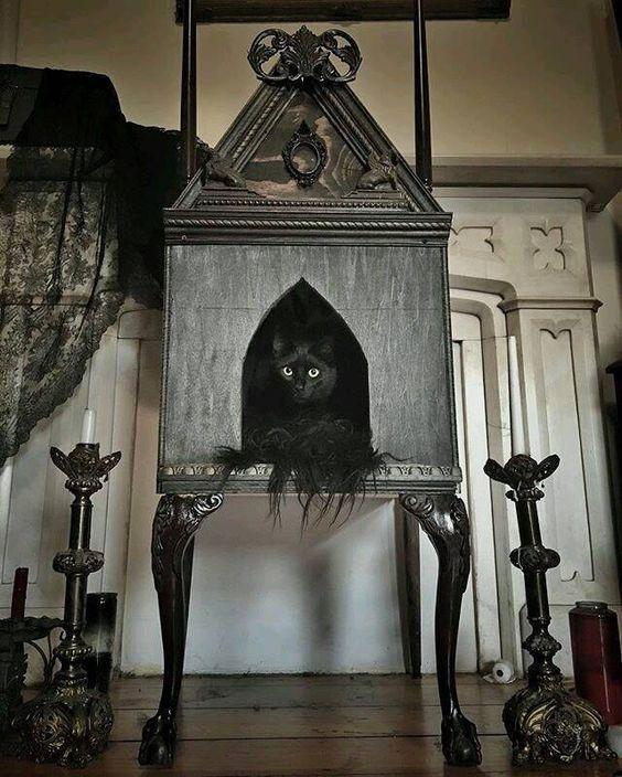 Gothic kitty house found on ihorror.  #gothic #goth #catspic.twitter.com/vBzvlmXWQj