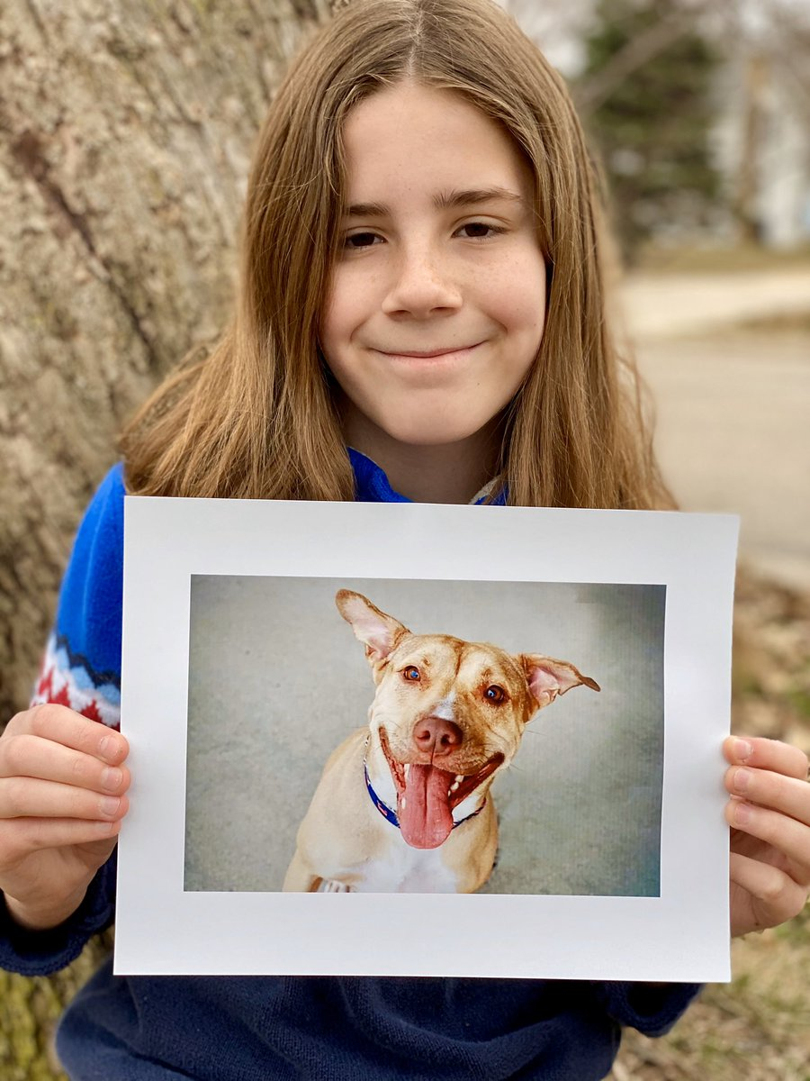 test ツイッターメディア - I would love to pet Maggie. She is a 4 year old Pitbull mix @ReachRescueInc who needs a home. She should be the only pet. Maggie can do tricks: shake, leave it, and play dead. She loves people, carrots, and running in the backyard. More than anything, she wants to find her family https://t.co/hmbOmLuSVV