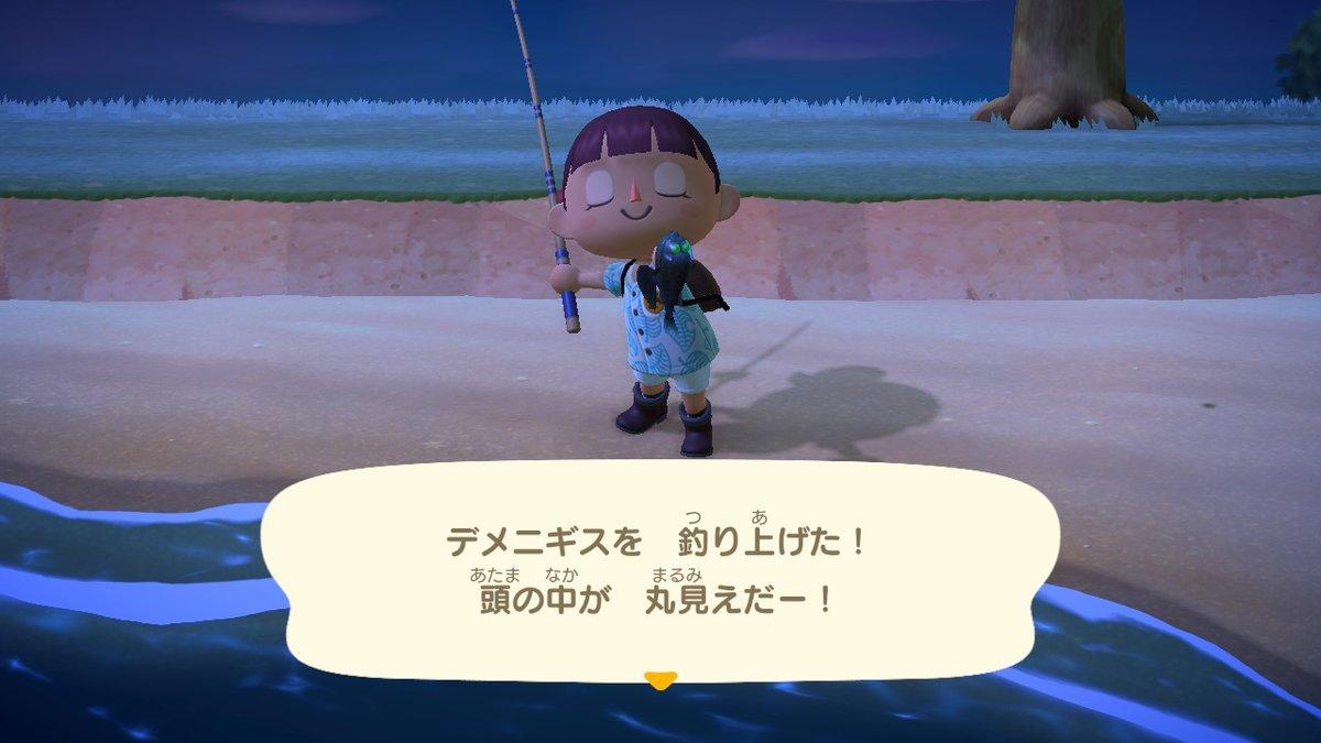 森 深海 魚 あつ