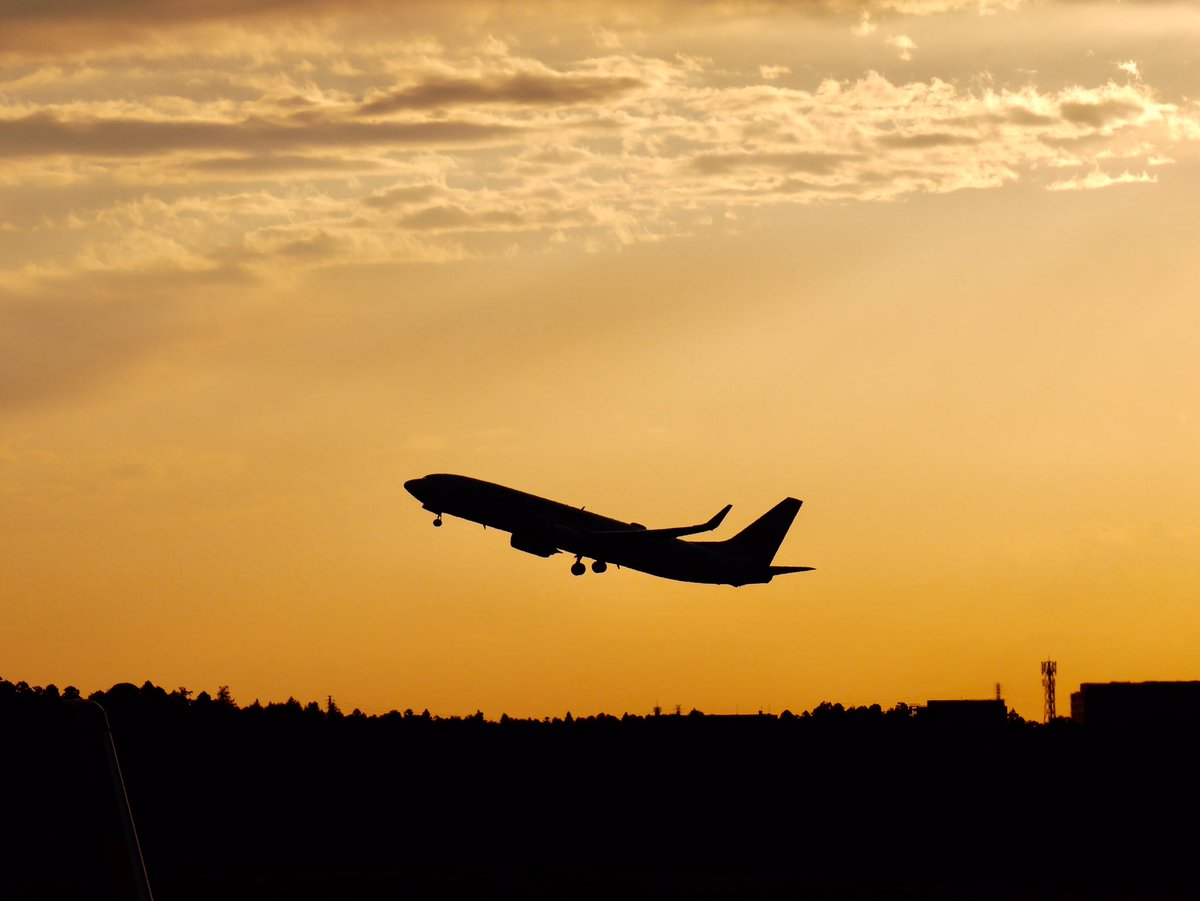 たそがれどきのJALさん . #jalの日  #jal #japanairlines_jal  #flyjal #ja345j #nrt https://t.co/YVLbLZRzxs