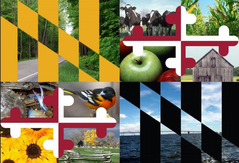 @StateMaryland's photo on #MarylandDay