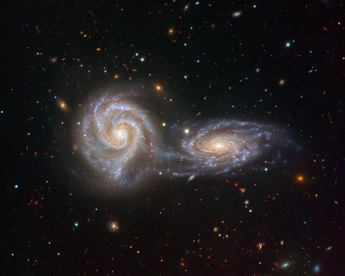 все времена исследование галактик картинки бультерьер