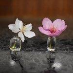 すごい一輪挿し!花が小さくても、茎が短くてもいけられる!逆さにもできます!