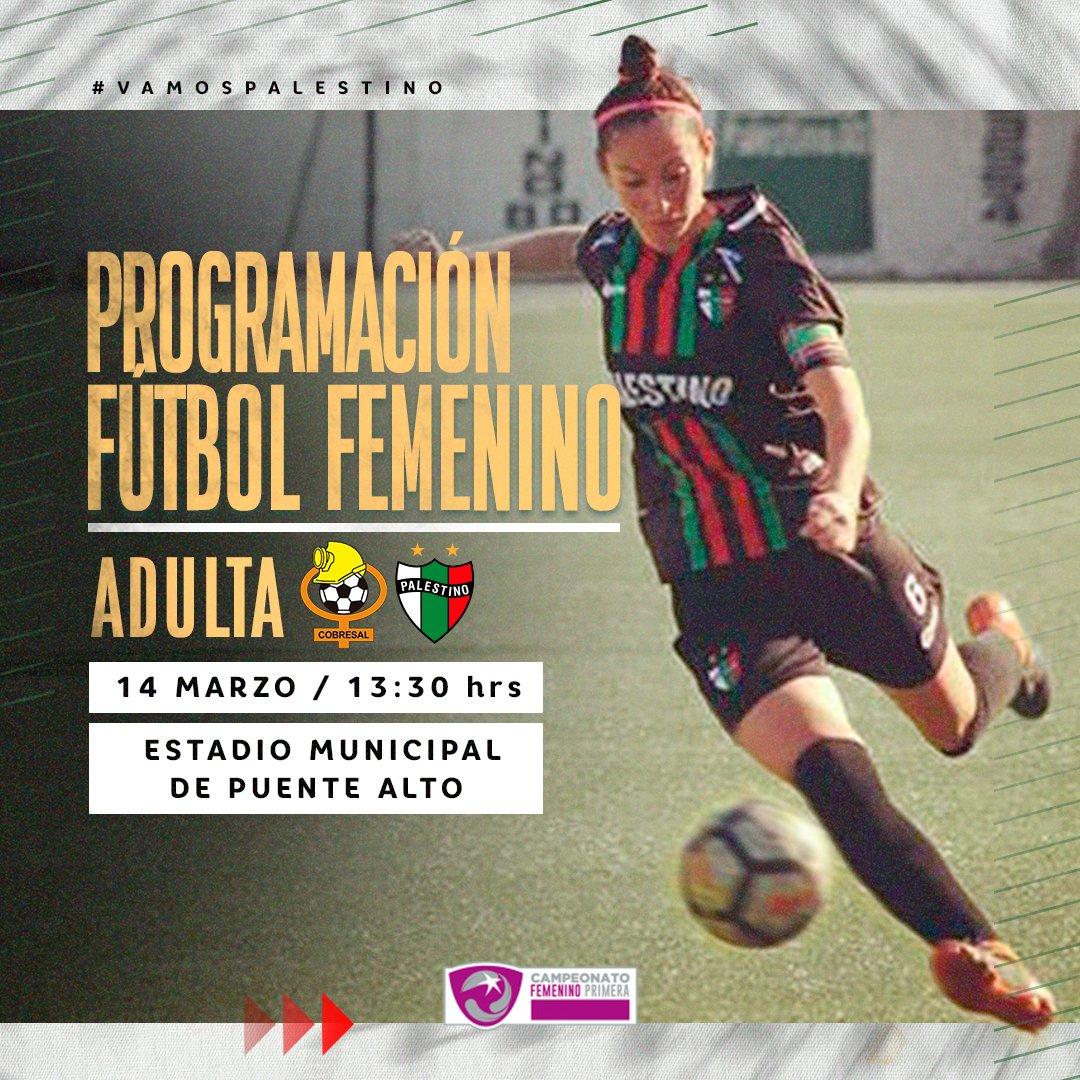 🇵🇸 ¡EL FEMENINO REGRESA CON TODO! 💪🏻 Revisa la programación de la primera fecha del Campeonato Femenino y apoya a nuestras jugadoras esta temporada 💚 ¡Vamos Tinitas! ⚽️ https://t.co/dTv1FwZftA
