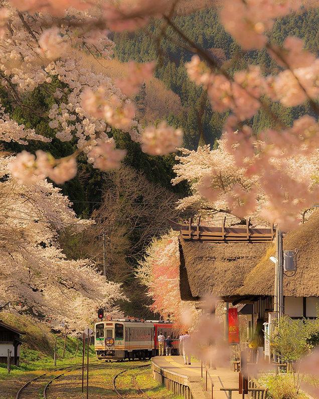 会津鉄道(福島)