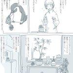 観葉植物を育てる上でのポイントを分かりやすく漫画で解説!