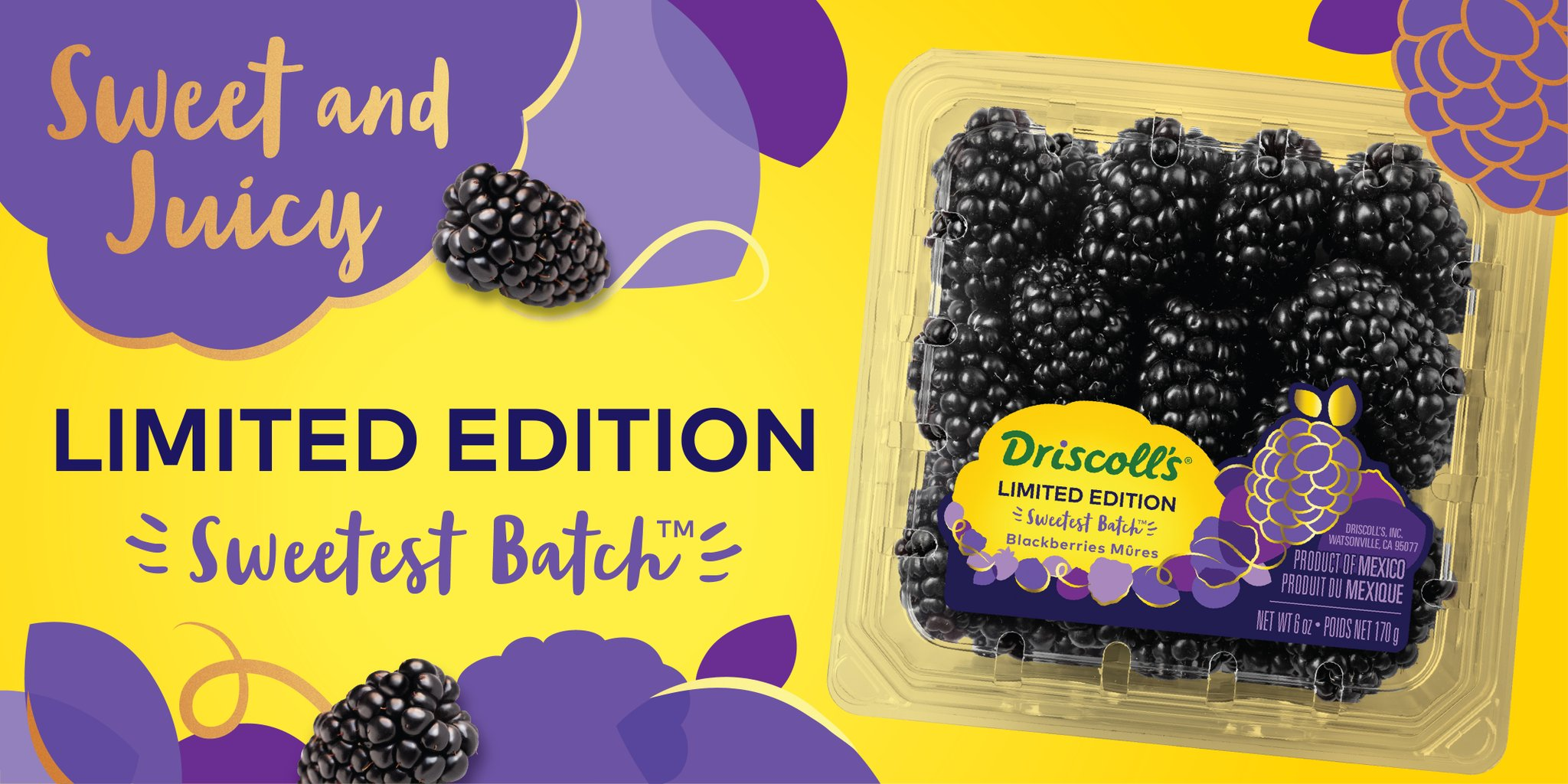 "Driscoll's Berries on Twitter: ""What makes our Limited Edition Sweetest  Batch™ #Blackberries so delightful? They're wonderfully sweet, not too  tart, incredibly juicy, and amazingly aromatic. Available for a limited  time! … https://t.co/W3Ht863Sz7"""