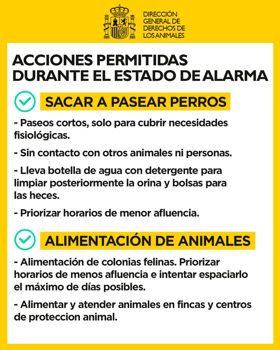 Resultado de imagen de DIRECCION GENERAL DERECHOS ANIMALES ESPAÑA