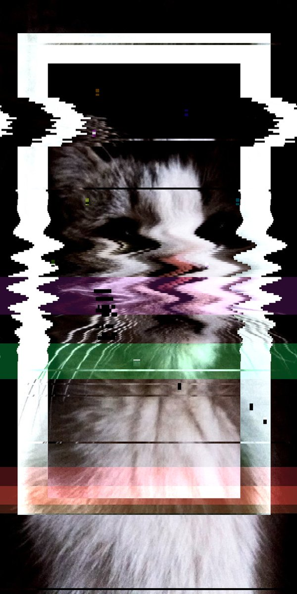 😀💫 cat glitch kedi nodejs bot cosine invert Origin img by @__gelaris__