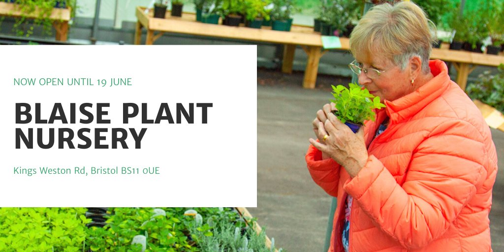 Blaise Plant Nursery On Twitter We