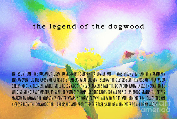 Art for Sale  SHOP HERE: https://andrea-anderegg.pixels.com/featured/the-legend-of-the-dogwood-7-andrea-anderegg.html … #fineart #homedecor #dormdecor #wallart #typography #inspirational #minimalism #onlineshopping #buyart #artforsale #quotes #minimalist #easter #springdecor #mothersdaypic.twitter.com/PjIdObGFg5