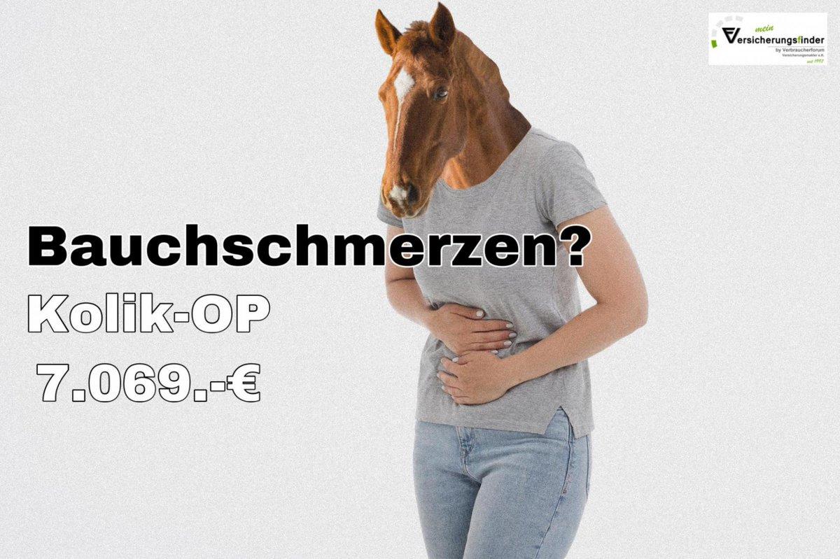 Um im Notfall richtig abgesichert zu sein, jetzt Tierversicherung vergleichen: https://verbraucherforum-info.de/pferde-op-versicherung-vergleich/…  #tierversicherung #pferdeversicherung #pferdekrankenversicherung #pferdemädchen #pferdeliebe #pferdeleben #kolik #pferdekrankheiten #versicherungsfinder #ausliebezumtierpic.twitter.com/J7hBV9hKqQ