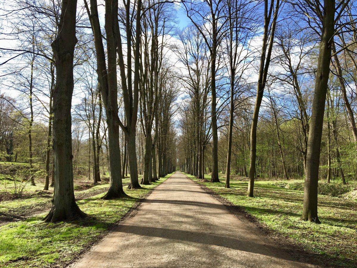Endlich kommt der Frühling, Zeit wird's!  Genießt die ersten Sonnenstrahlen z.B. bei einem #Spaziergang durch den benachbarten Stadtwald.  Beste Grüße aus dem #7THINGS #7thingshotelbremen #7thingsapartment #brementipps #bremen #frühling #meinbremen #bremenerlebenpic.twitter.com/5f5oQ0MEKm