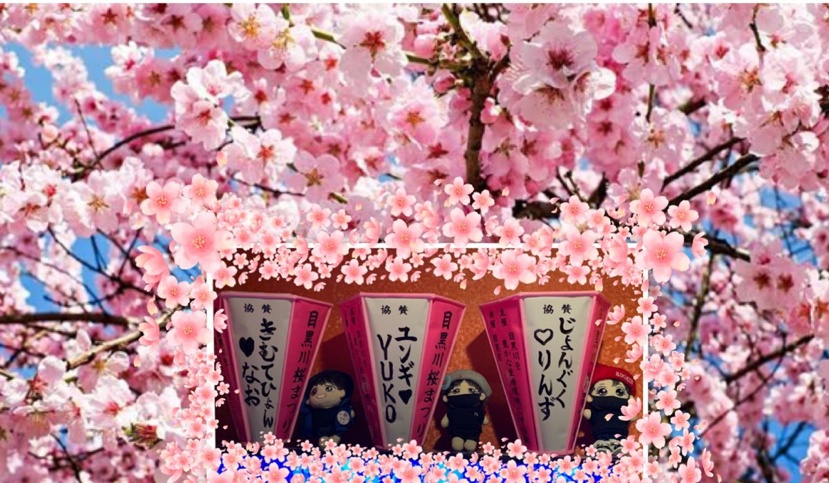 去年のみんなのツイを見て、憧れてて、今年は目黒川の桜祭りに関西から参加予定でした🌸 残念ながら中止になっちゃったけど、桜が満開のところに飾りたかったな🌸 いつも花道だけを歩いて欲しい気持ちでいまーす💜 バンタンに届きますように🌸🌸🌸  #BTS🌸桜祭り2020 #BTSに幸あれ🌸 @BTS_twt https://t.co/RQjSUc6QOp