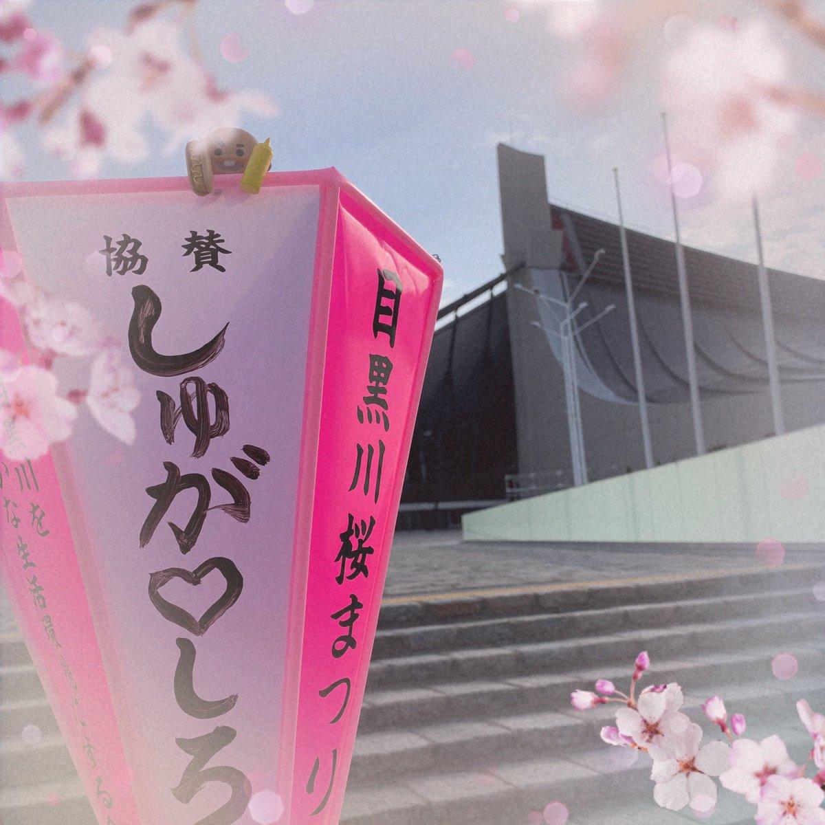 2020春🌸 楽しみにしていた2020目黒川桜まつり 来年満開の桜の下爽やかな風に揺れる沢山のBTSのボンボリが見られるように願いを込めて(✿˘艸˘✿)  #BTS🌸桜まつり2020🌸 #BTSに幸あれ🌸 @BTS_twt https://t.co/EzHQvDnw1m