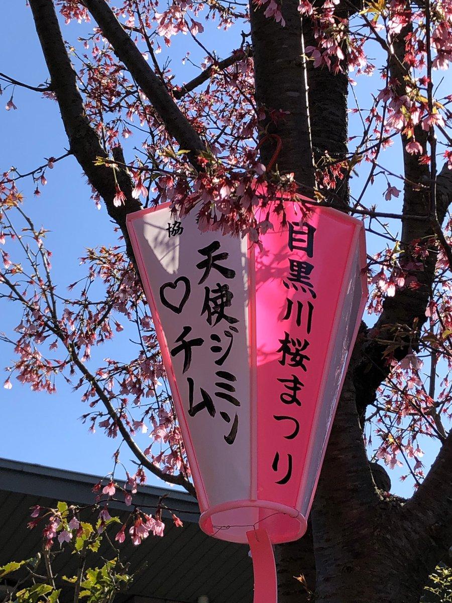 ことしは新型コロナウイルス  感染症対策のため目黒川桜まつり  のライトアップやぼんぼりの点灯  が中止に😭  せっかく作ったぼんぼりを  メンバーに届けたい💕  イルボンARMYより愛をこめて💜  @BTS_twt   #BTS桜祭り2020🌸 #BTSに幸あれ #ソメイヨシノが咲く前に #キッチンにて #階段にも https://t.co/jbLMNpCydB