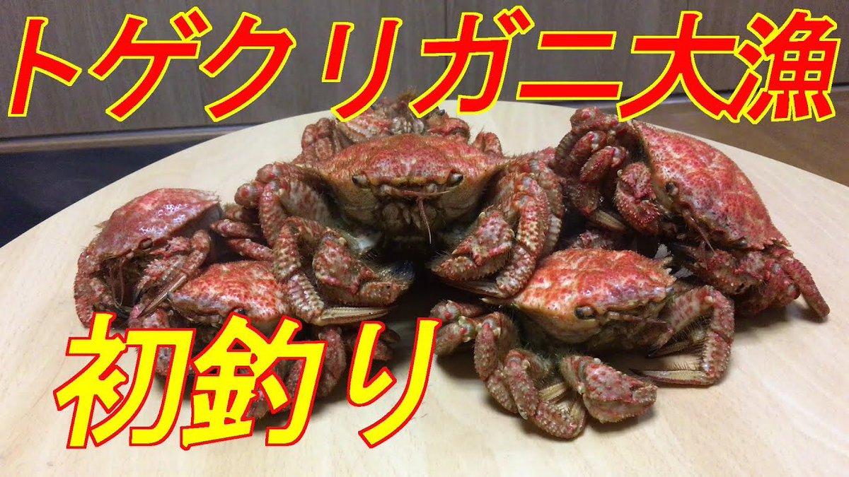 青森 カニ食べ放題