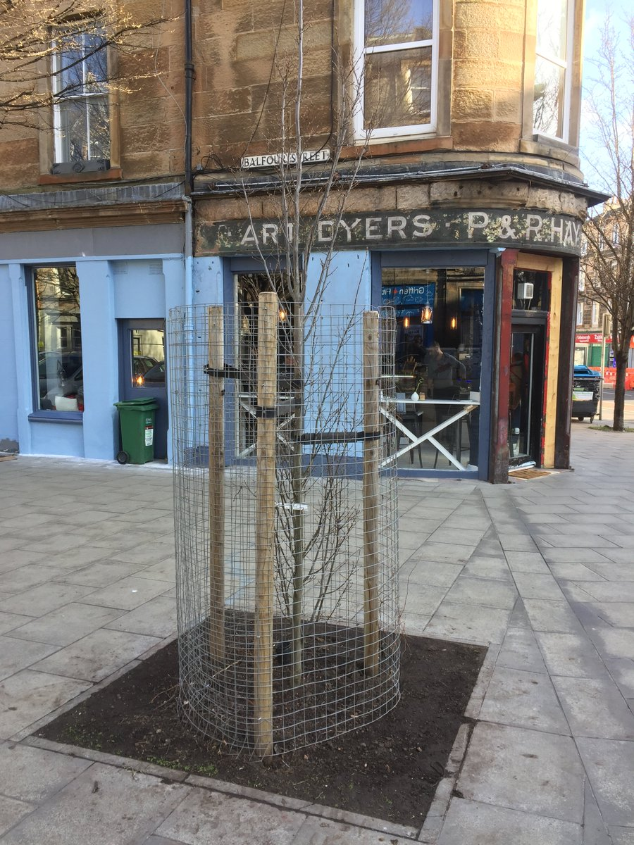 Great to see a new street tree installed in Balfour Street thanks to donations through Tree Time. https://t.co/wE9bLnCPHl @Edinburgh_CC @WoodlandTrust