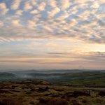 Image for the Tweet beginning: A beautiful mackerel sky at