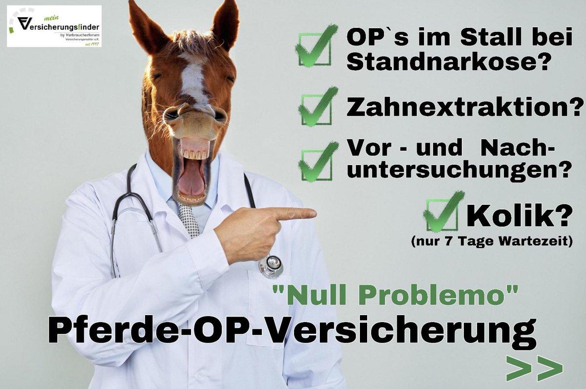 Jetzt Pferde-OP-Versicherung vergleichen! https://verbraucherforum-info.de/pferde-op-versicherung-vergleich/…  #tierliebe #tierversicherung #pferdeversicherung #pferdeliebe #pferdeleben #pferdeglück #pferdemama #pferdemädchen #verbraucherforum #versicherungsfinder #ausliebezumtier #nullproblemopic.twitter.com/DnL4rTpORq
