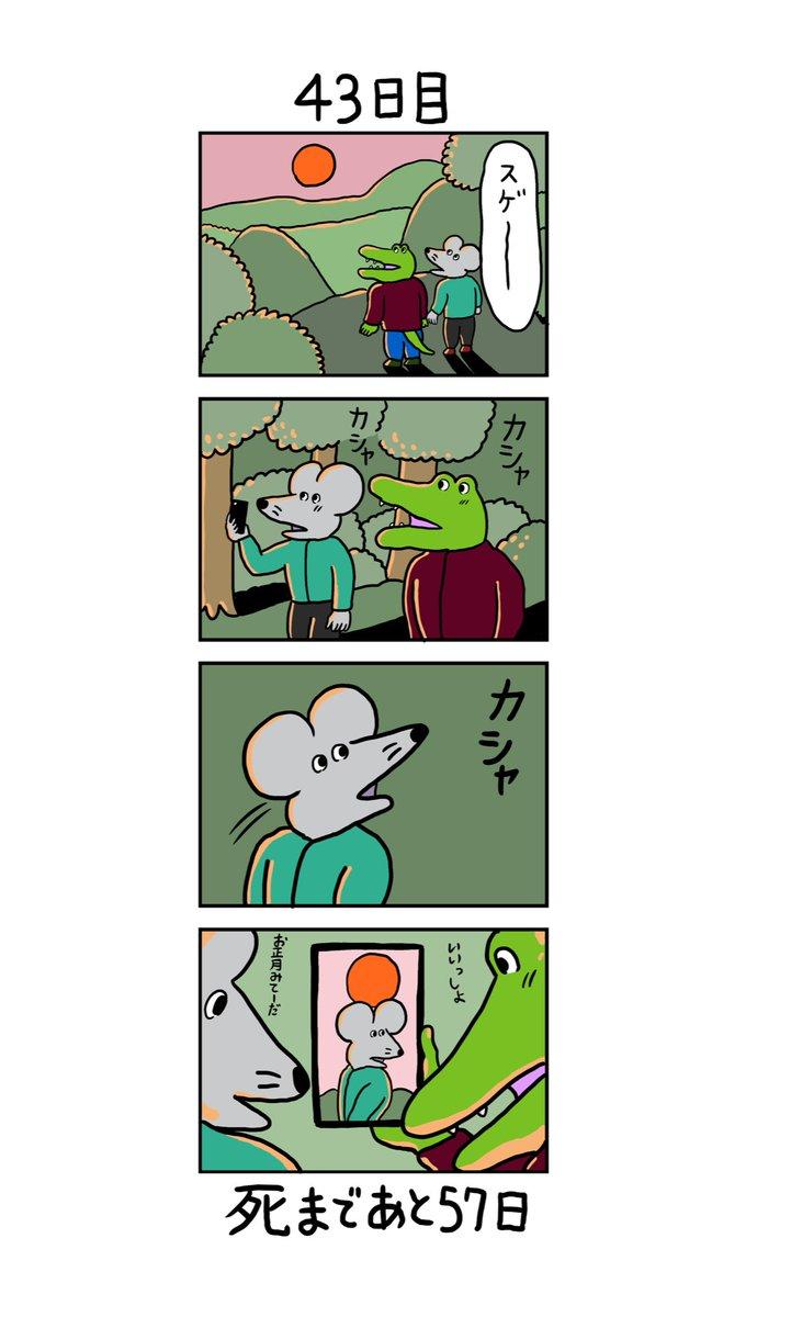 ワニ くん twitter