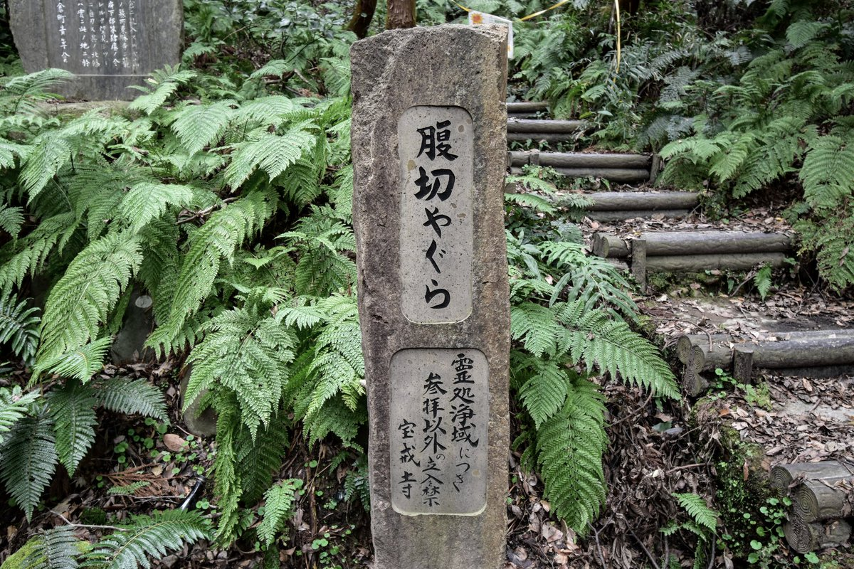 鎌倉 幕府 場所