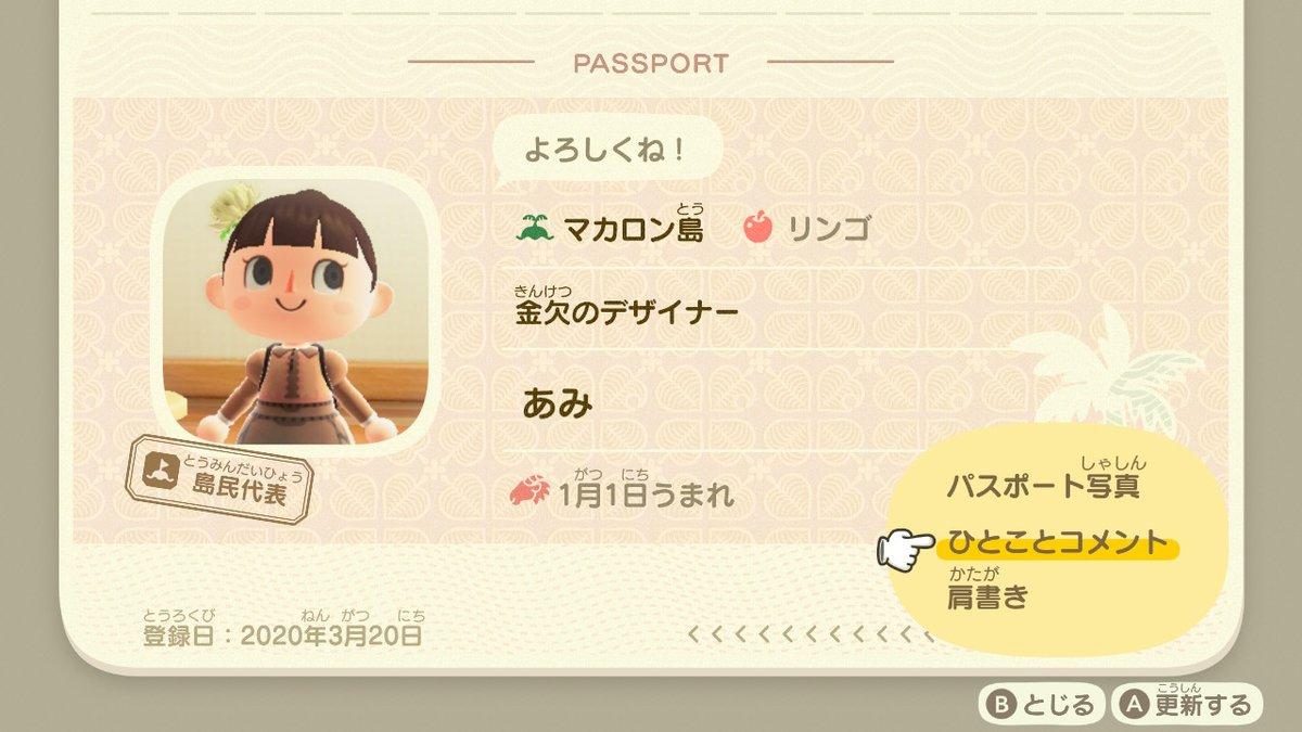 あつ 森 パスポート 写真