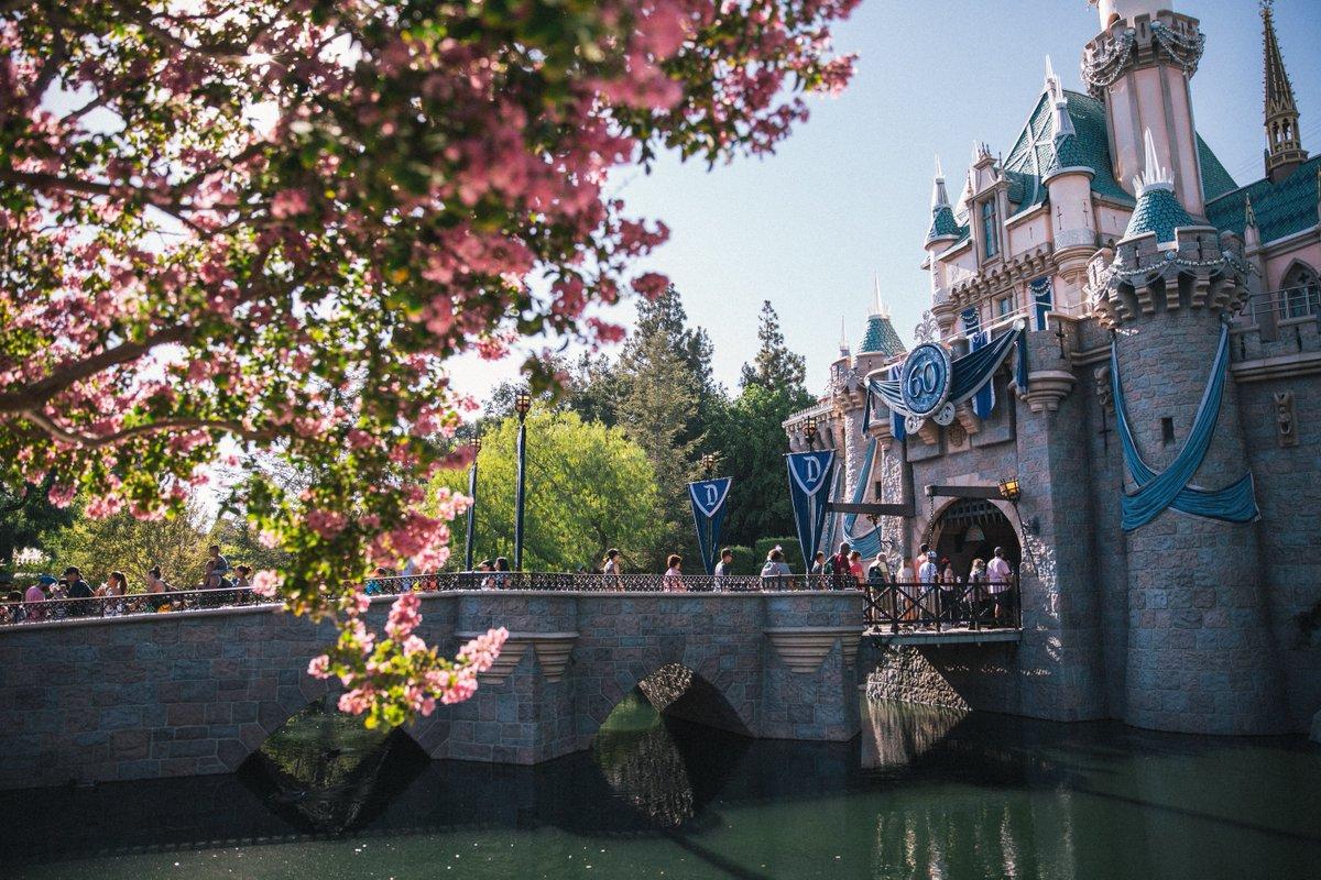 Dreaming of #spring days at @Disneyland. 🌸 https://t.co/Ezpd9U1NLq