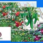 Image for the Tweet beginning: KSC5240: Greenhouse Vegetables