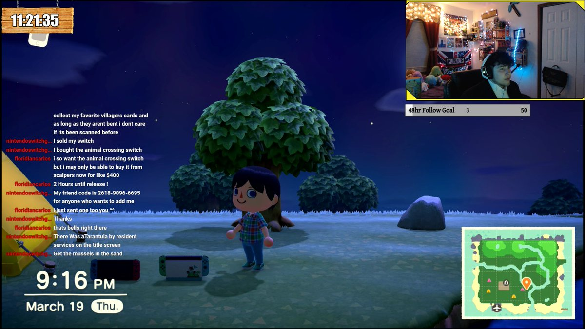 animal crossing nintendo switch in game item