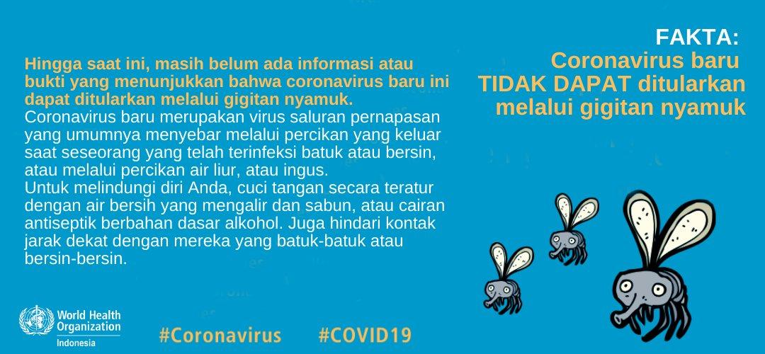 Fakta Virus Corona