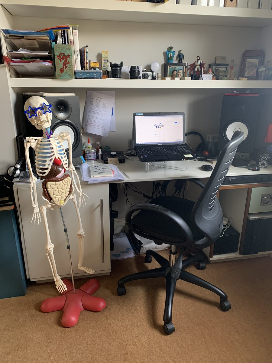 Home office set up and new assistant hired... #WorkingFromHomeLife #SocialDistanacing