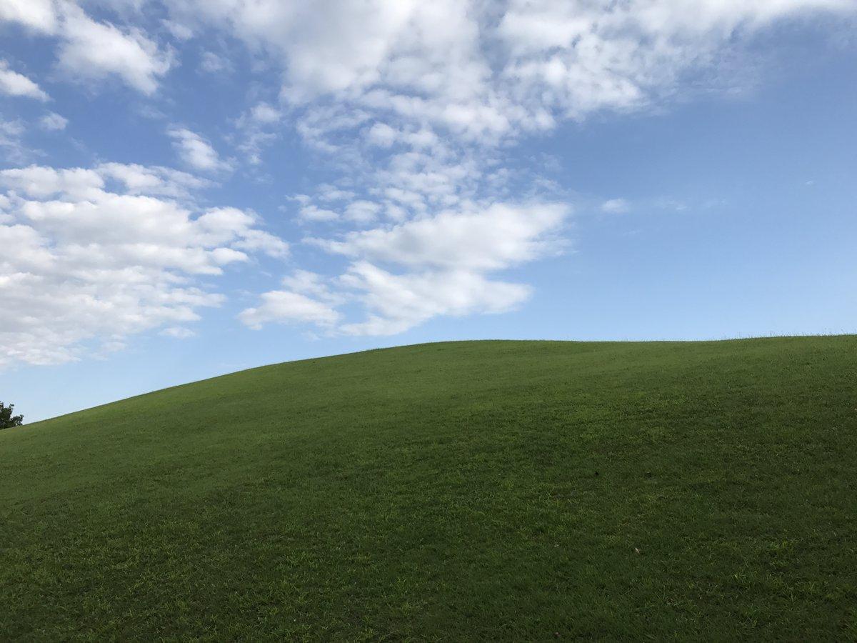 ヤマキ On Twitter この写真 Windows Xpの壁紙みたいだろ 多摩