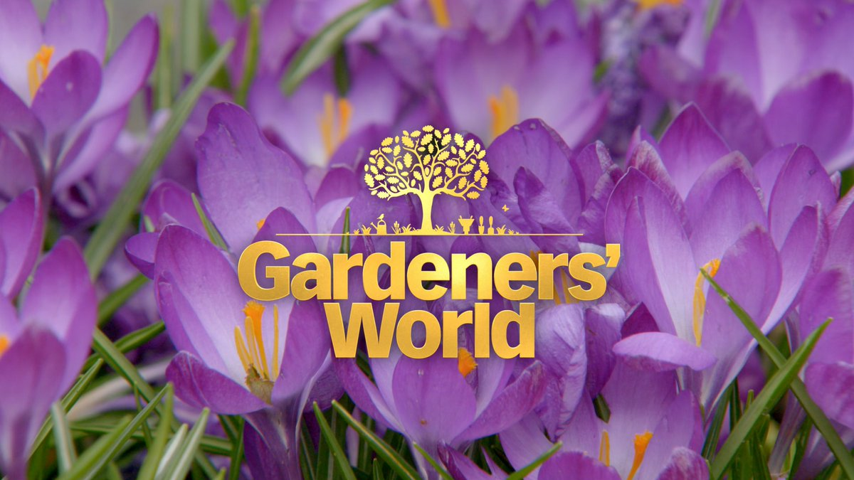 The wait is nearly over folks! Spring is here and we're raring to go. See you at 8.30pm on the dot #GardenersWorld #FridayFeeling #FirstDayOfSpring <br>http://pic.twitter.com/Dc9R6Ohcp1
