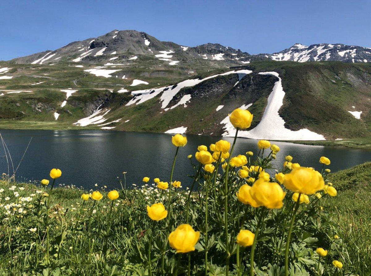 It's spring !!  let's dream ....                  By C.B.#nature #landscape #naturephotography #naturelovers  #photography #mountains #trek  #Beautiful  #mountains #snow #hiking #lake pic.twitter.com/v0rimFvuxD