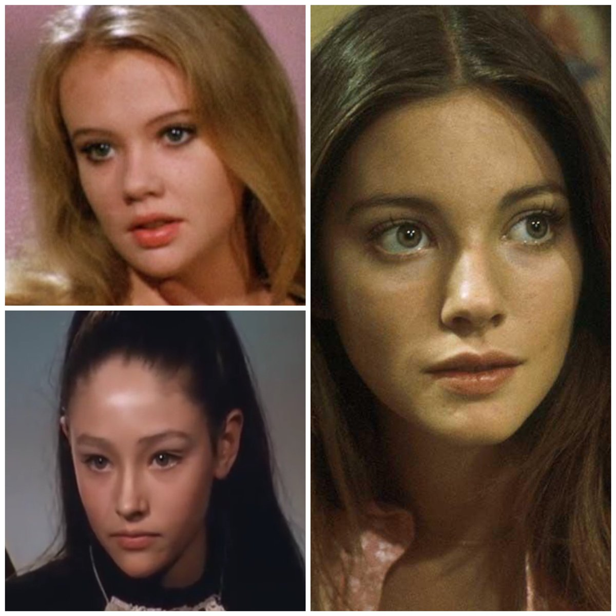 When #LynneFrederick made her film debut #50YearsAgo she instantly became an overnight sensation. Hailed as one of Hollywood's most promising newcomers, she seemed destined to  follow in the footsteps of #HayleyMills and #OliviaHussey  • #LynneFrederickFanPage #EnglishRosepic.twitter.com/go4AK6lKPP