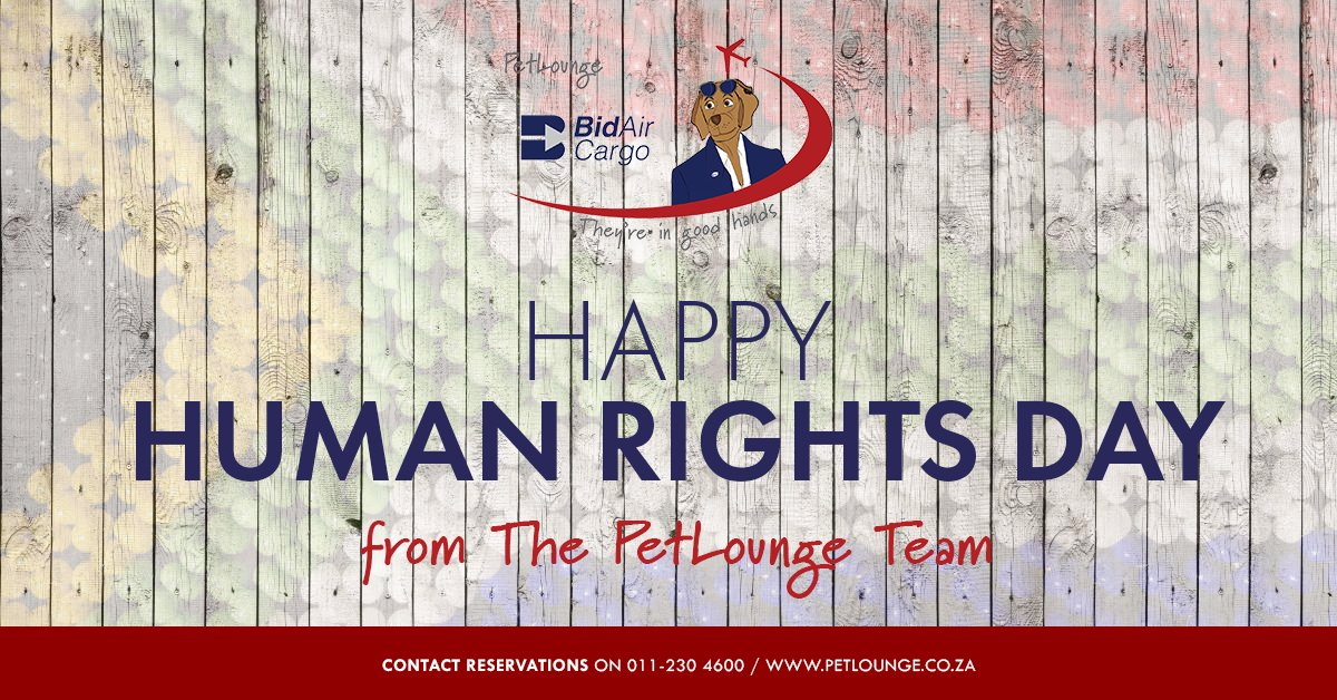 Celebrating #HumanRightsDay 🇿🇦 #PetLounge #SouthAfrica https://t.co/6Yd1x8wJHo