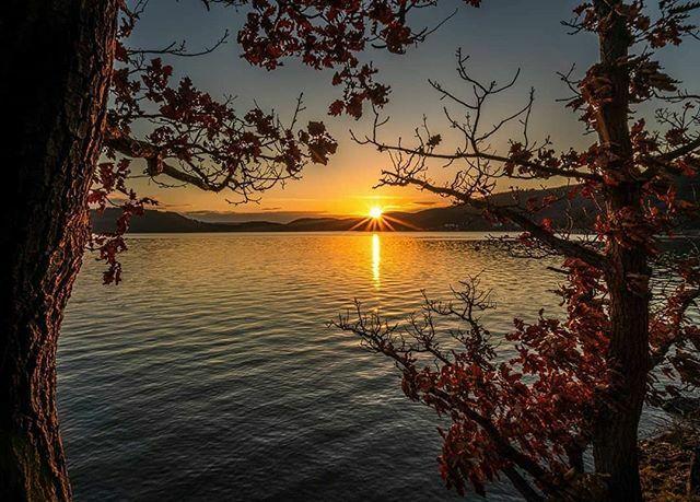 Ein Träumchen, dieser Sonnenuntergang!  Matthias @muellerswanderlust hat ihn am Edersee fotografiert.  @muellerswanderlust  #waldeckfrankenberg #waldeckerland #hessentourismus #edersee #wunderschönesnordhessen #sonnenuntergang https://ift.tt/2WxZLRRpic.twitter.com/2Pc0fZF7MG