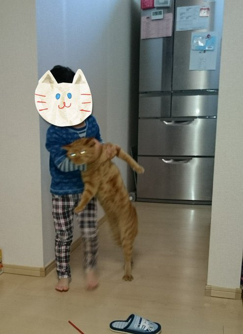 ネコの下手くそな写真がかわいすぎ!失敗作にも味がありますね。