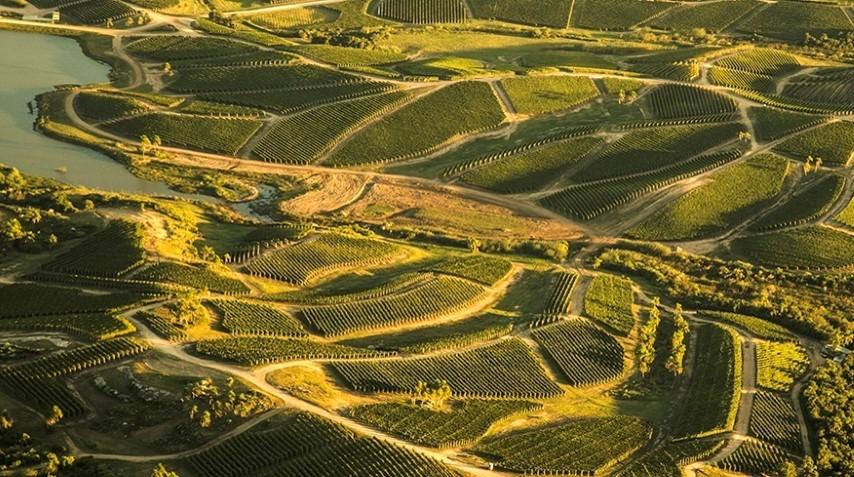Celebrating harvest at @BodegaGarzon, immersed in Uruguayan wine. #travel #wine https://t.co/6iEiPqMOPK https://t.co/GokV8u6MFm