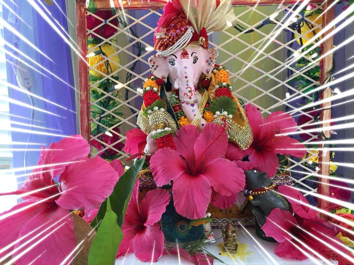 Bhagwa Twitter #PositiveTweetsKaroNa  #BhagwaTwitter  Please post your fav bhagwa click and spread the positivity as #IndiaFightsCOVID19   My fave bhagwa pic is of my Ganpati Deva #Ganpatibappahttps://twitter.com/BesuraTaansane/status/1241293797201346560…pic.twitter.com/tNrfe3S4Je