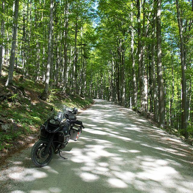 Schotterpiste in Slowenien, (11.05.2015) ⠀ #blindschleichech #travelphotography #motorcyclediaries #travelblogger #europeanbikers #bikestagram #bikerlife #adventurebike #endurobike #motorcycle #Motorrad #motorcyclelife #dirtbike #advbiker  #mototravel #motolove #instamotorcy…pic.twitter.com/L2Aq8L6e3z