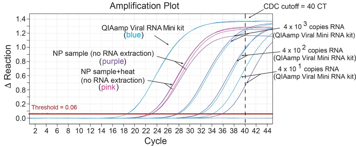 Emily Bruce Phd On Twitter 1 N Our Work Describing The Adaptation Of The Cdc Rt Qpcr Assay For Use With Alternative Qiagen Rna Extraction Kits As Well As Skipping The Rna Extraction Step