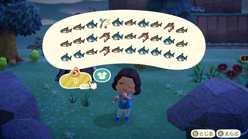サメ の あつまれ どうぶつ 島 森
