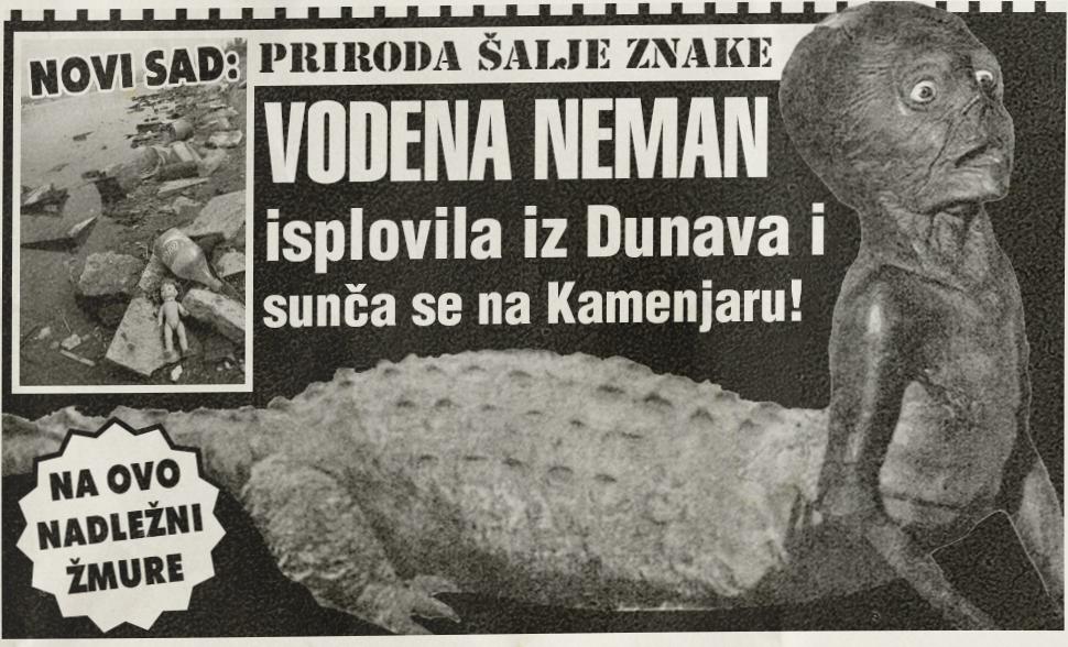 Vodena neman isplovila iz Dunava i sunča se na Kamenjaru